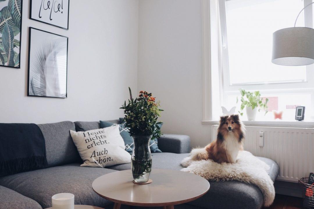 roomtour scandinavian living room sofa