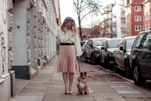 Hund in der Großstadt