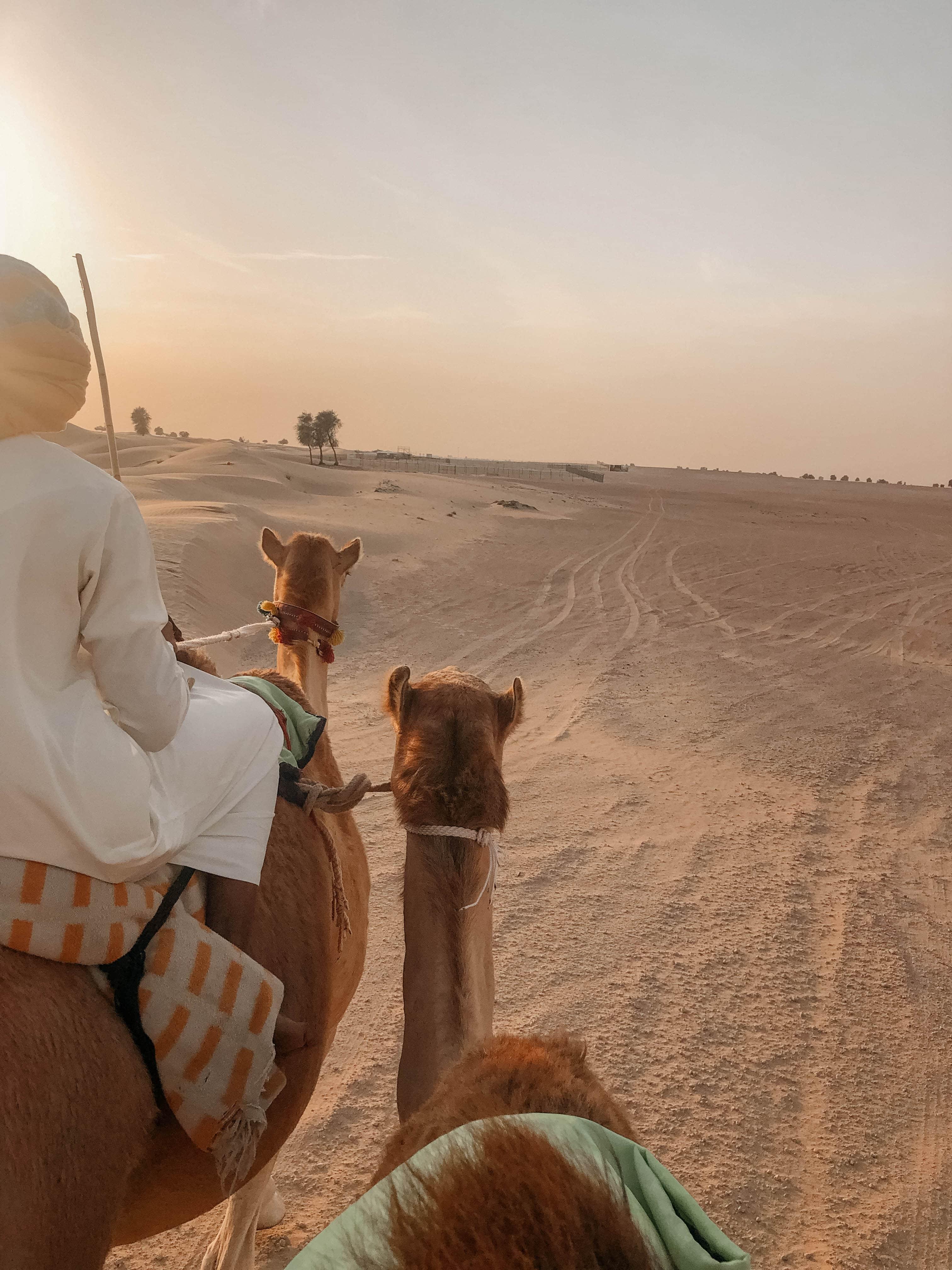 dubai insider tipp kamel uschi