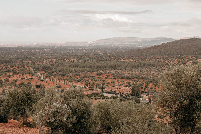 flachland von mallorca