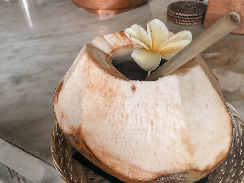 coconut in bachclub auf bali
