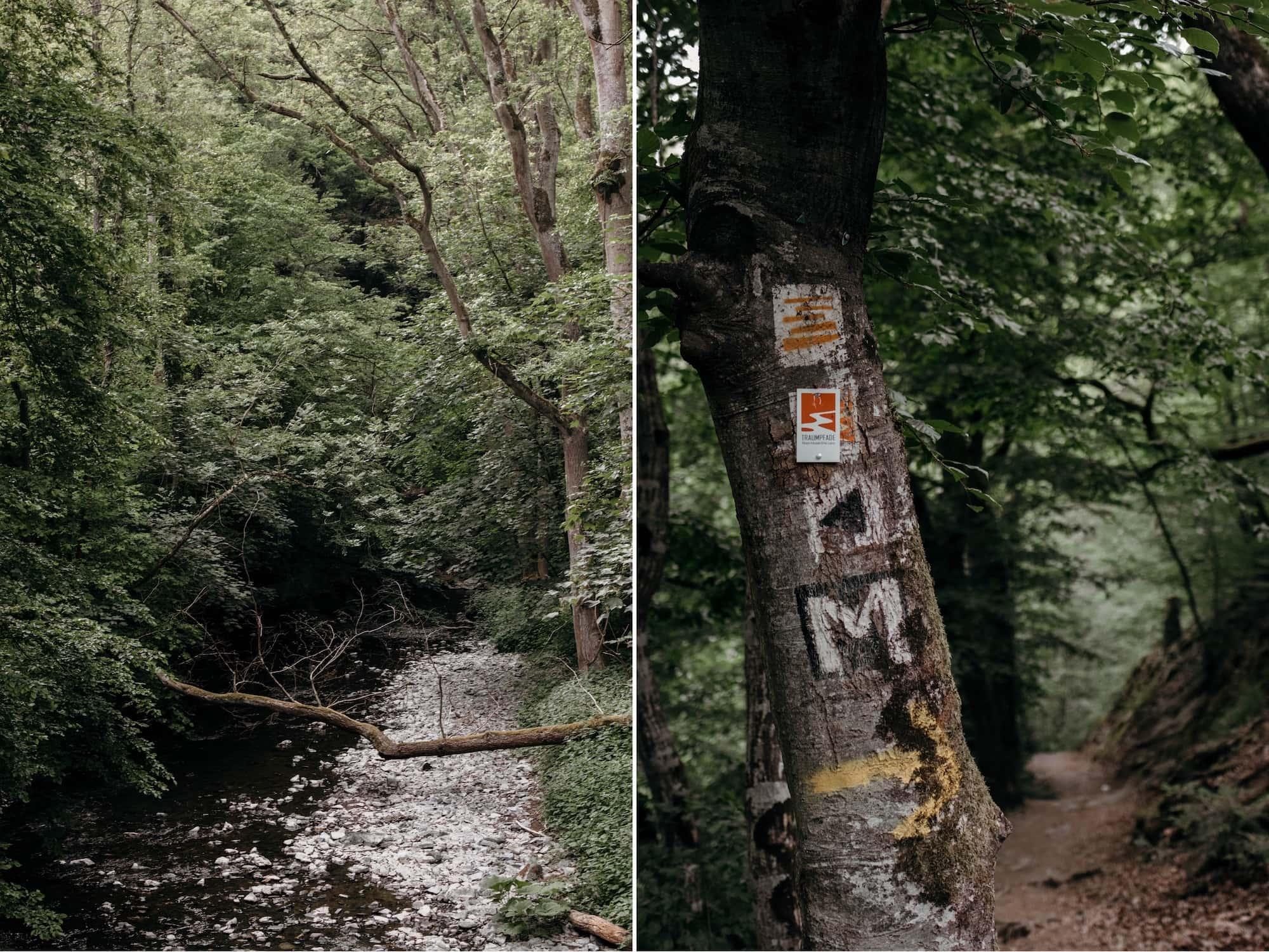 Eifel Highlights Traumpfade