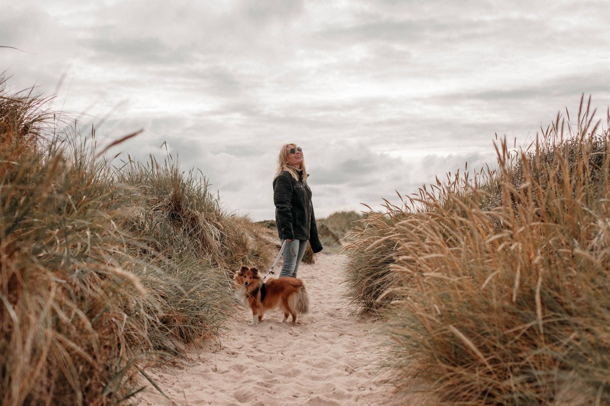 dünenlandschaft sylt Hund