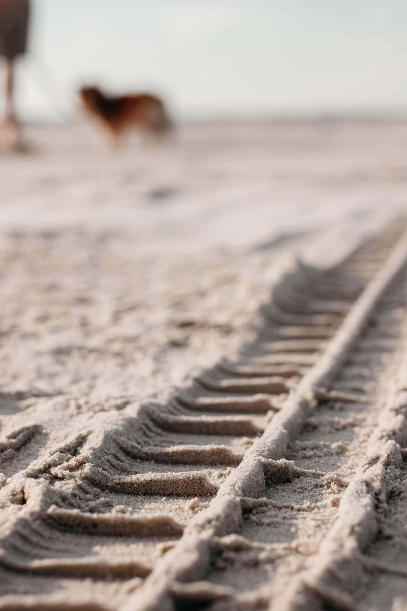 auto spuren im sand