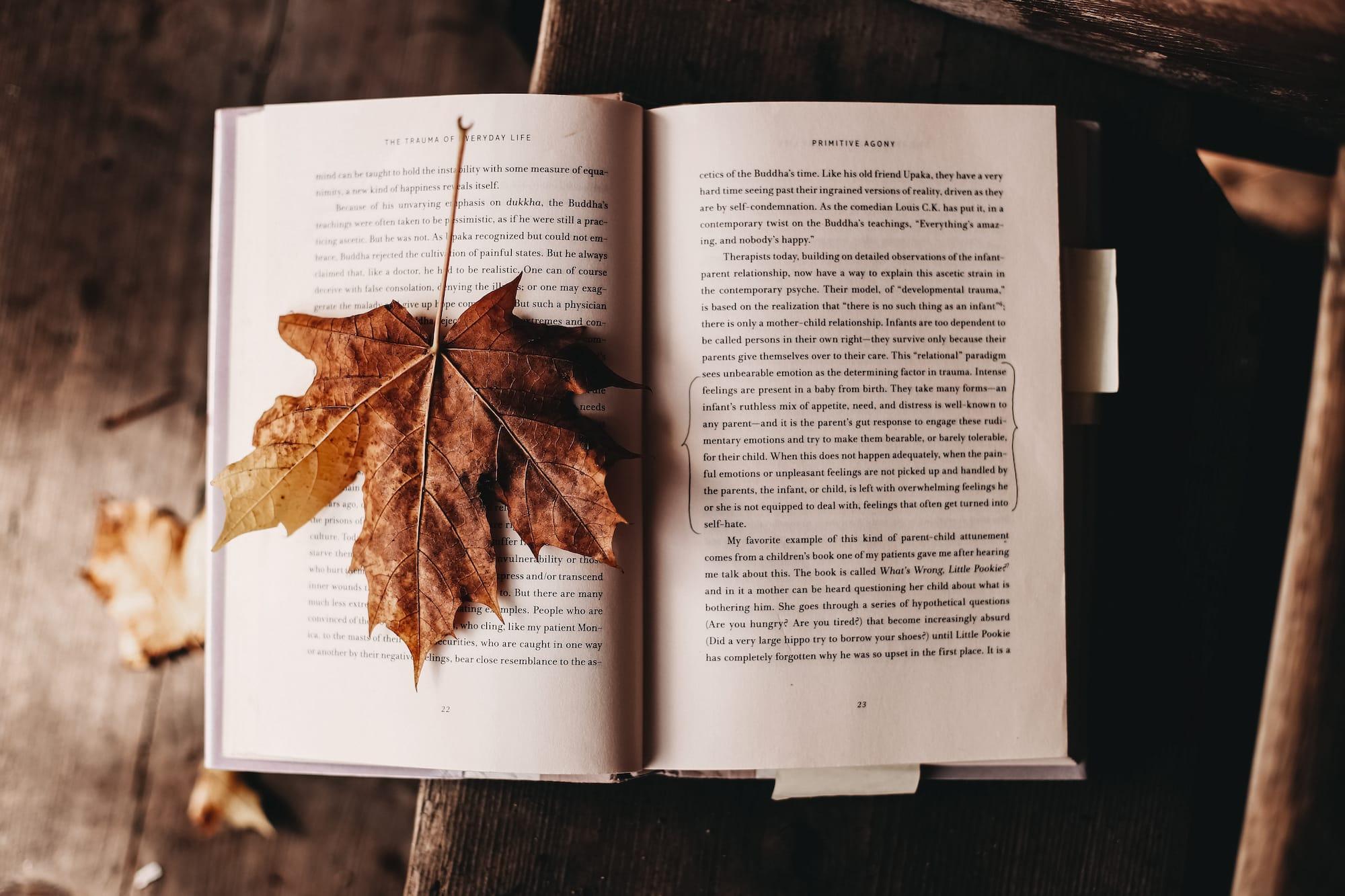tipps gegen herbstblues lesen