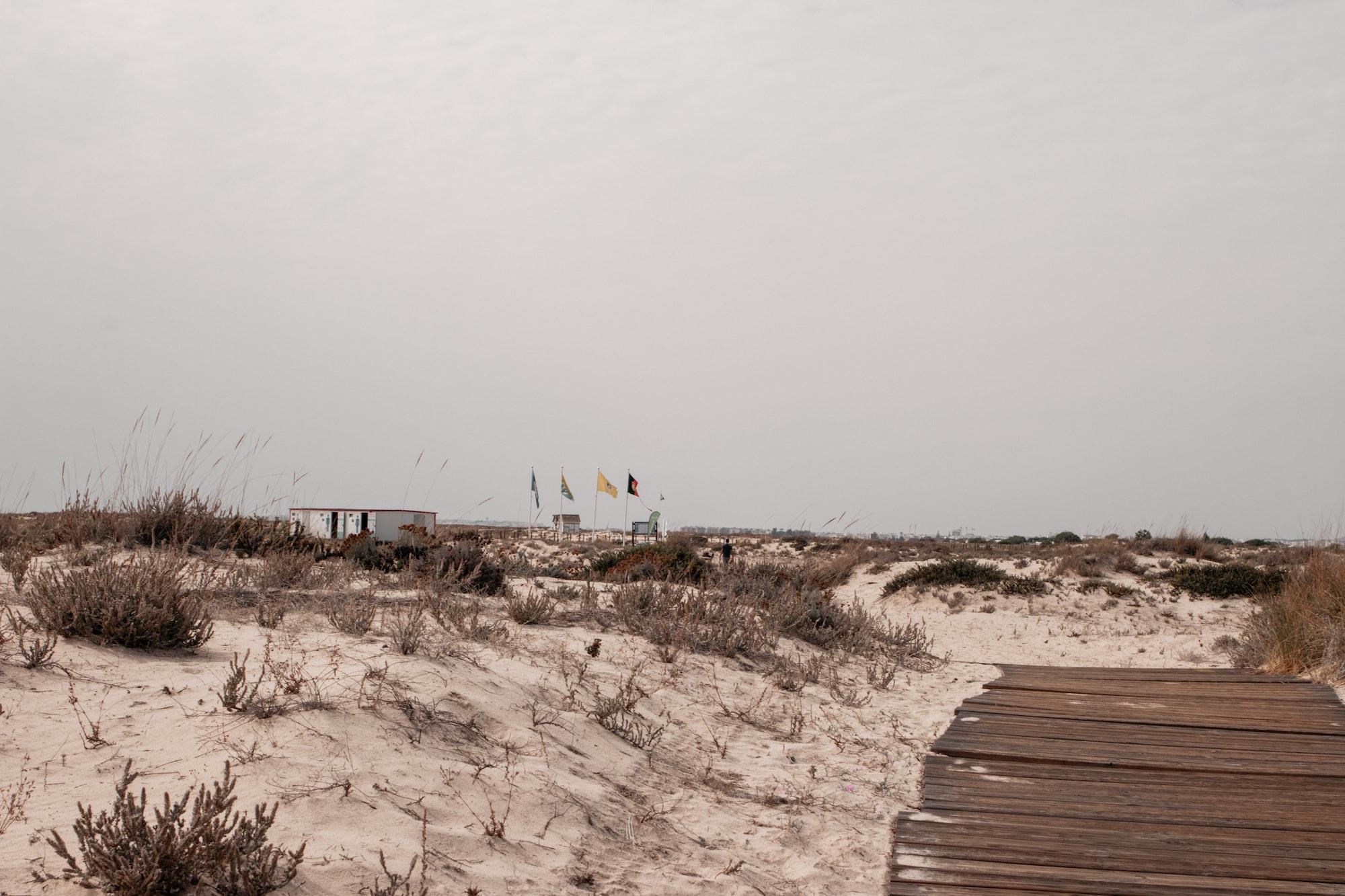 ilha da armona strand