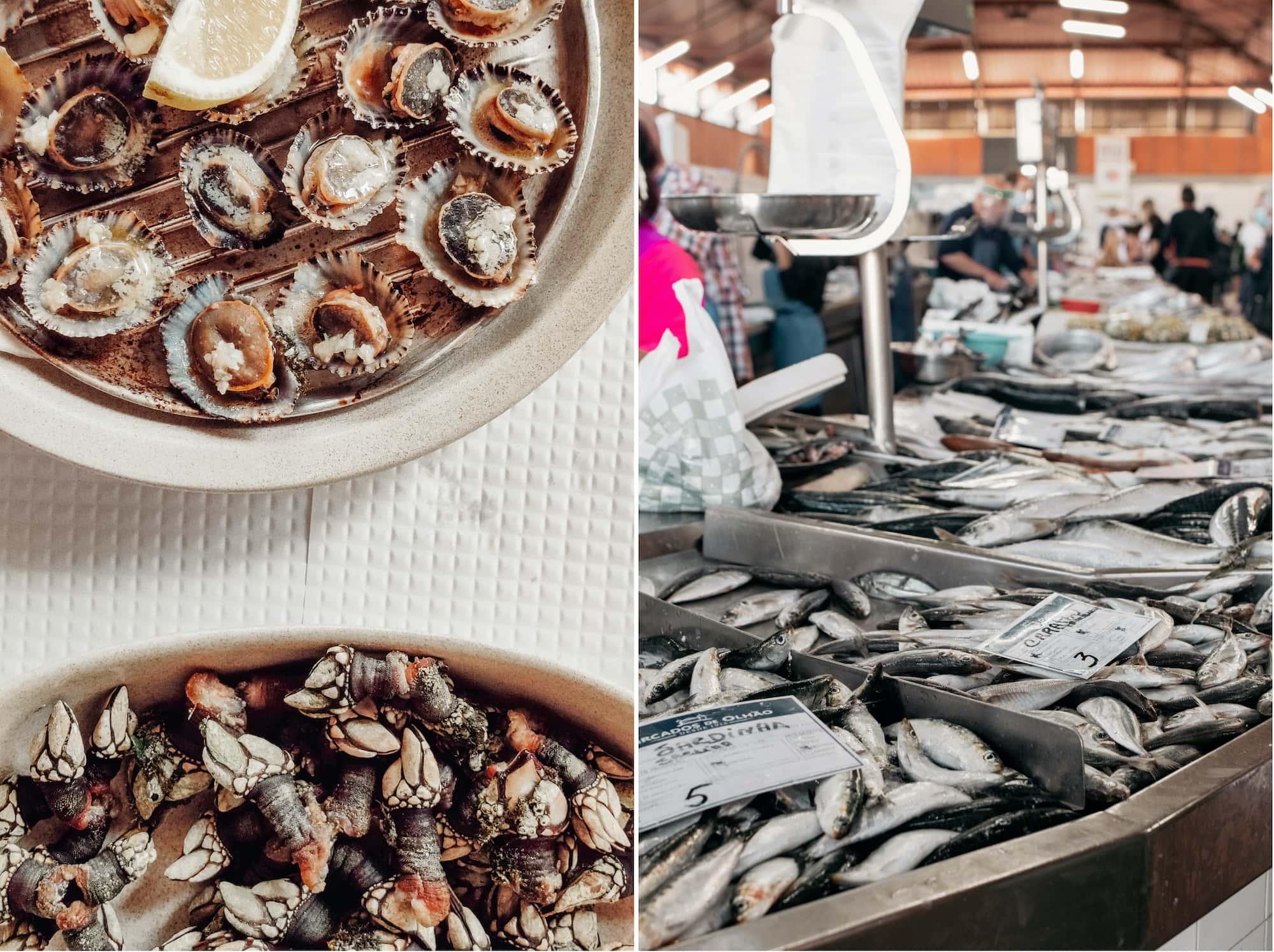 fischmarkt algarve portugal