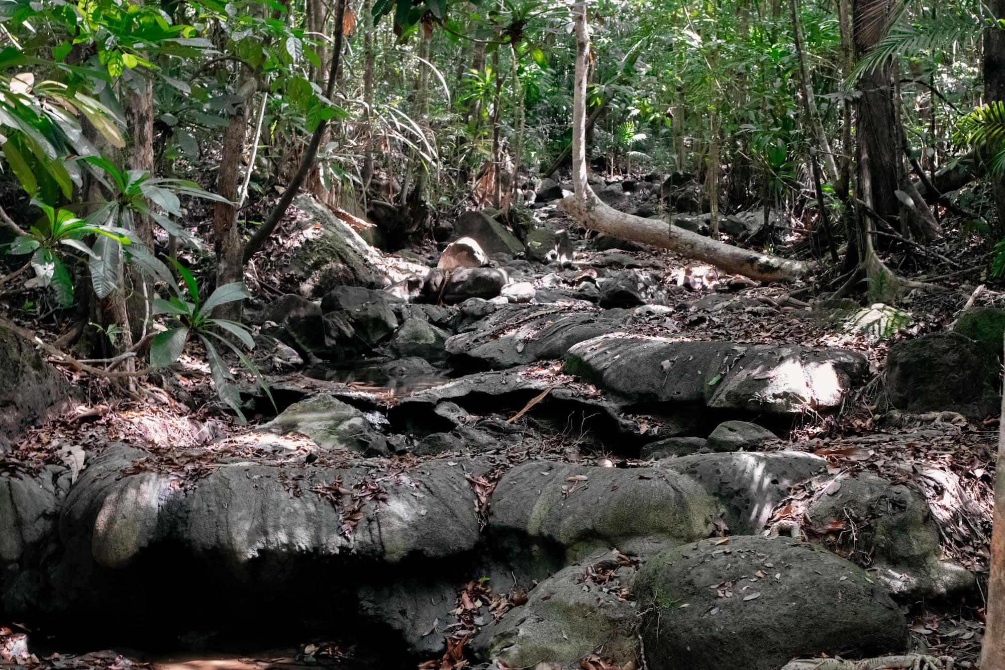 Tab Kak Hang Nak Hill Nature Trail aufstieg