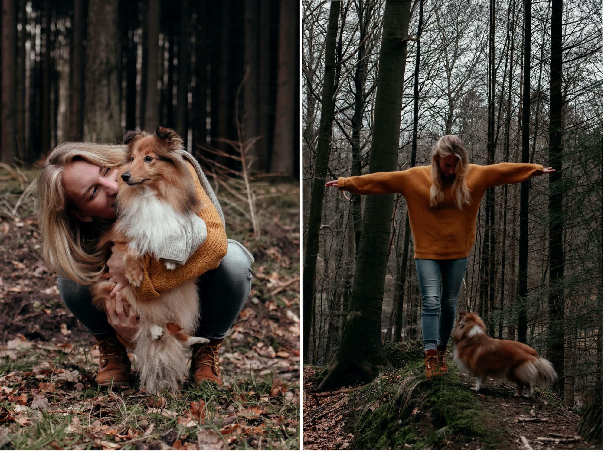 hamburg ausfluege sachsenwald hund