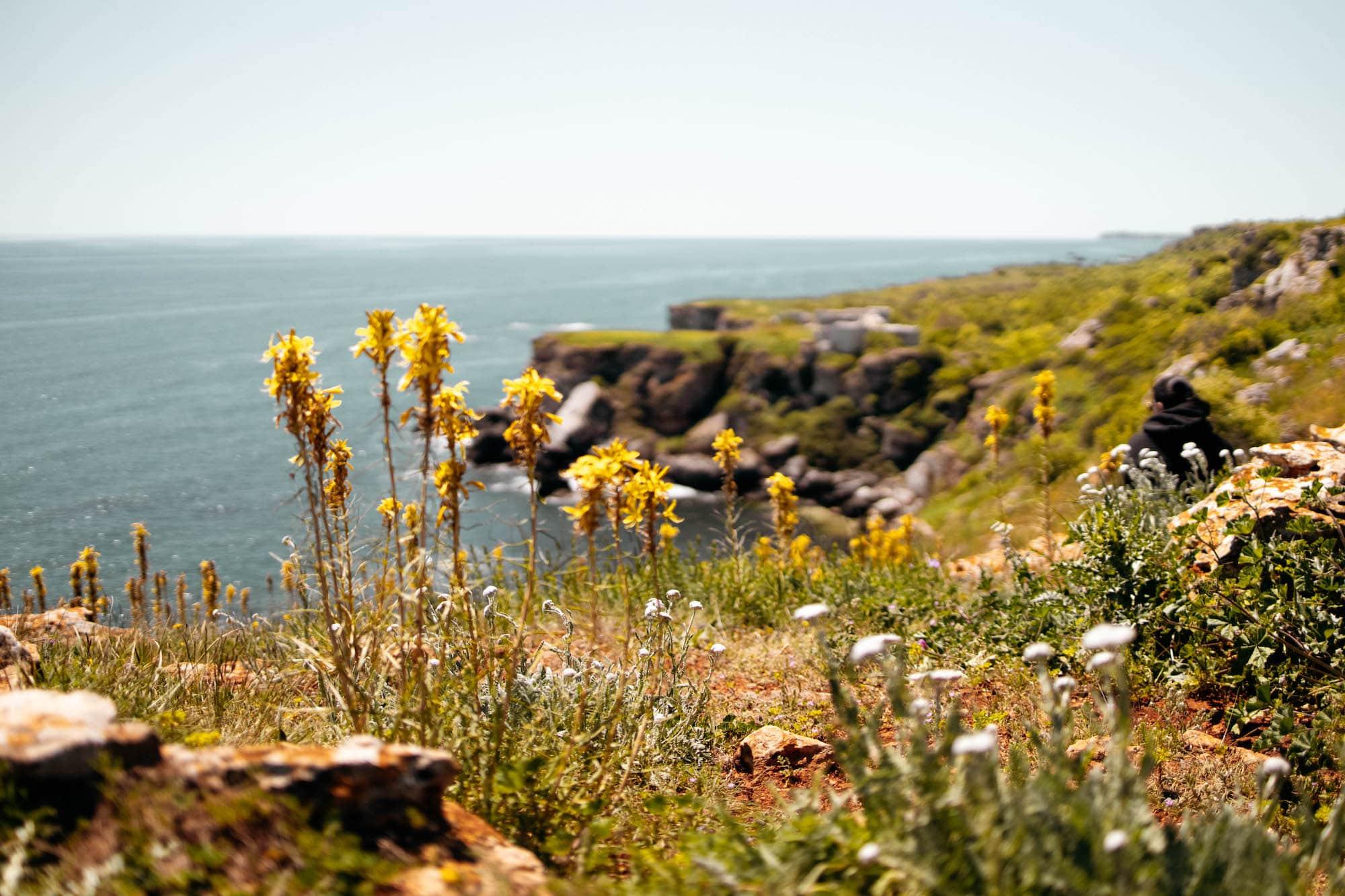 Jailata schwarzmeerküste