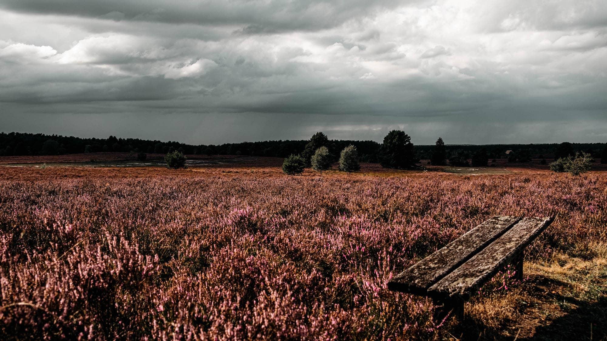 landschaft norddeutschland
